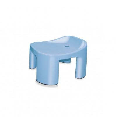 Milton Patra Backrest Stool for Bathroom
